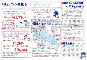 PeaceDolphin通信08