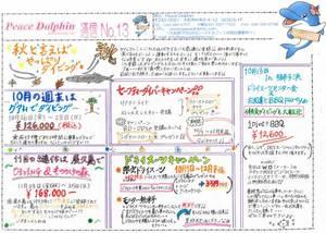 PeaceDolphin通信13