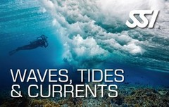 472547_Waves, Tides & Currents (Small).jpg