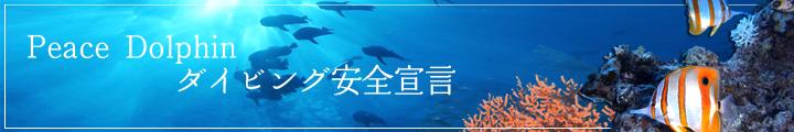 Peace Dolphin ダイビング安全宣言